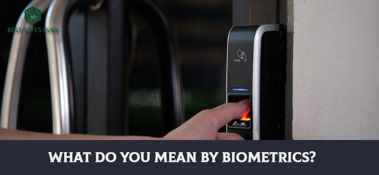 What Do You Mean By Biometrics
